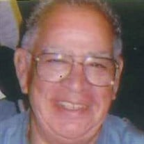 Joe P. Saldivar Sr.