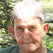 Bruce Wallace Pitchford