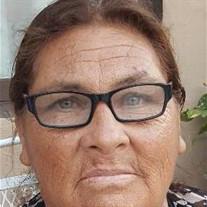 Ludivina Garcia