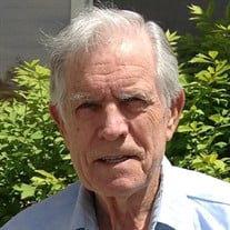 Melvin Lavon Marshall