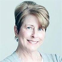 Susan D Scott