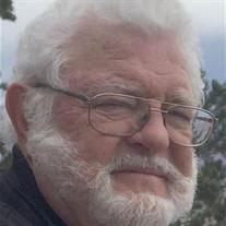 Louis Geye Hulsey