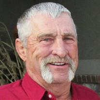 Dennis Doyle McBride