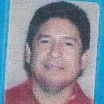 Gregory  S.  Mata