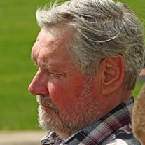 Larry Wilbur Laning