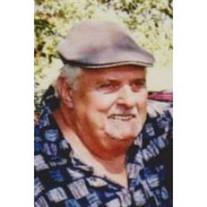 Wayne W Schaub