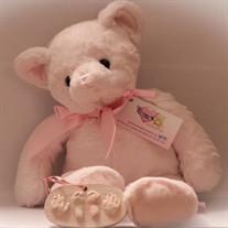 Baby Amira Nicole Gipson