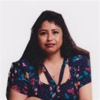 Yolanda M. Castillo