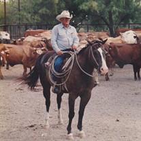 Carl L. Stewart Jr.