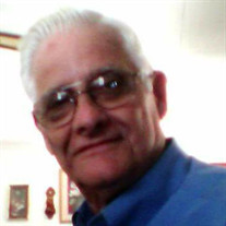 Mr. Glenn D. Segars Jr.