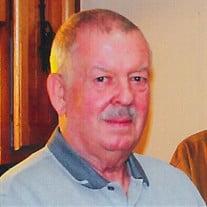 Mr. Herbert E.  Larkins  Jr.