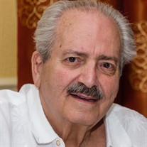 Mr. Victor L. Bernardino Jr.