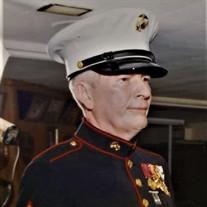 Donald Anthony Petrie