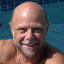 Richard N. Stravino