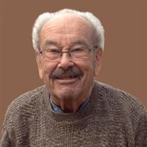 Vito E. Licari