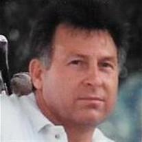 Dennis R Mays