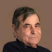 Martino   Palladino