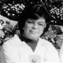 Lula Lindo