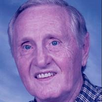 Mr. Henry Louis Schwartz