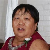 Pet Sio Saefong