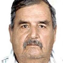 Guillermo Garcia Gamez