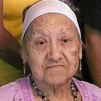 M. Petra Andrade