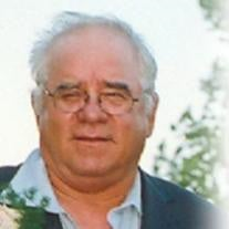 Mr. Stephen Louis Timchak