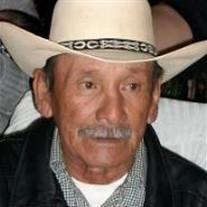 Salvador Flores