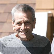 Mr. James A. Sansone