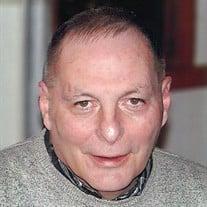Leon Julian Schmidt