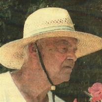 Mr. Louis G. Mills