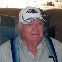 Mr. James Calloway Dulin