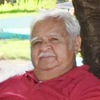 Mr. Jose Luis Vega Caudillo