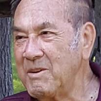Patsy P. Tanzillo