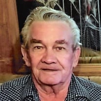 Bill Vales, 82, of Grand Valley Lakes