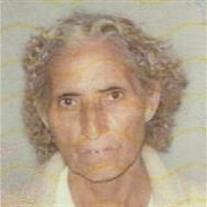 Maria F.G. Carbajal Lagunas