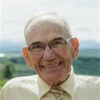 Mr. David Hays Knight