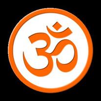 Gopi K Vyas