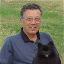 Dennis H. Newth