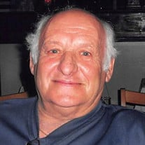 Louis J. Scavone Sr.