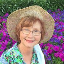 Mary Sue Flippo