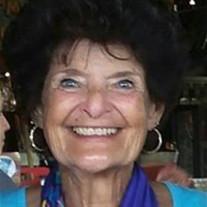 Susan J Smey
