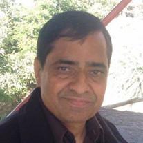 Suman K. Panchal