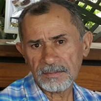 Domingo Lopez Arce