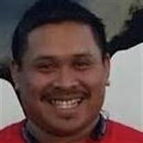Chhay Denn Pal