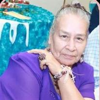 Margarita Nevares Ortiz
