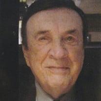 Michael Francis Amber
