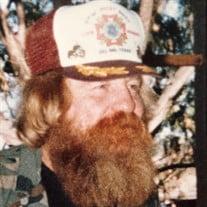 Robert N Watkins