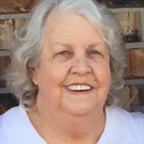 Sue Ann Erwin