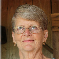 Patricia Joan Guyton West, 66, Iron City, TN